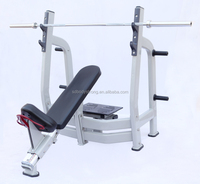 Bodystrong Incline Bench Press Machine Fitness Equipment L-025 (Luxury)