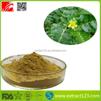 Best selling natural tribulus terrestris extract/40% -90% saponins