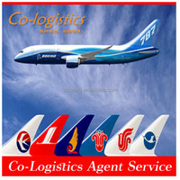 DHL air freight rates express from Shenzhen to Algeria--Oscar(Skype:colsales20)
