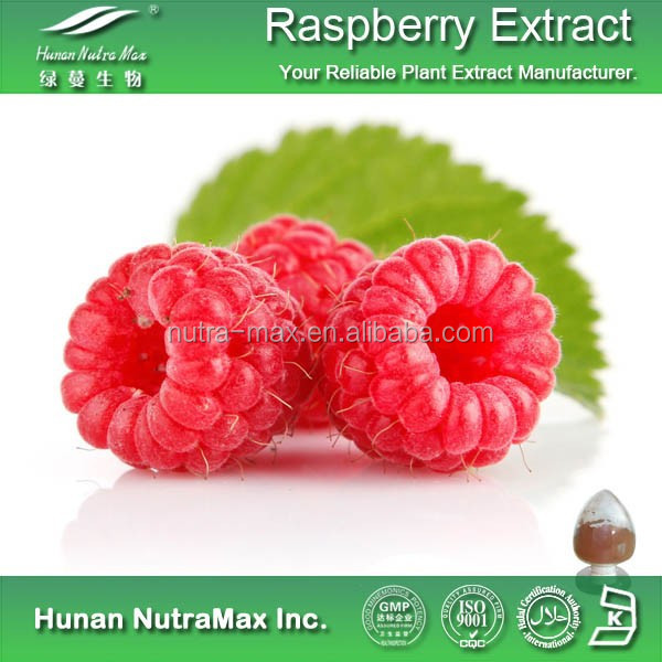 Natural Raspberry Ketone Extract,Raspberry Leaf Extract,Black Raspberry Extract