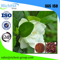 Natural Pigment Cape Jasmine fruit extract powder
