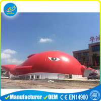 Outdoor Big Fish Begonia Air Supported Structure