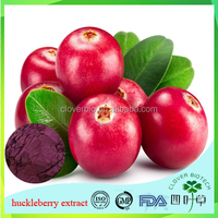 huckleberry extarct / cowberry blueberry extract 10:1 bilberry juice extract powder Lingonberry extract