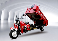 strong chasis motorized tipper cargorickshaw with high quality