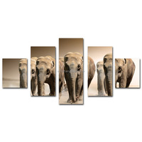 Animal elephant multi-panel cotton canvas prints