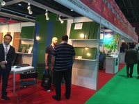2016 Dubai Wood Show New Product Green Film Faced Plywood With Brand Name