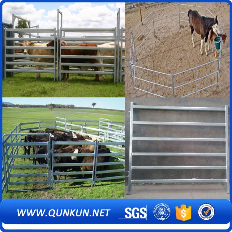 2016 hot sales sheep filed fence