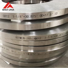 High Quality ASME/ANSI B16.5 Gr5 Titanium tapped flange for chemical industry