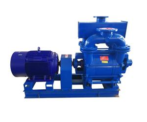 Single stage water ring vacuum pump china made with motor