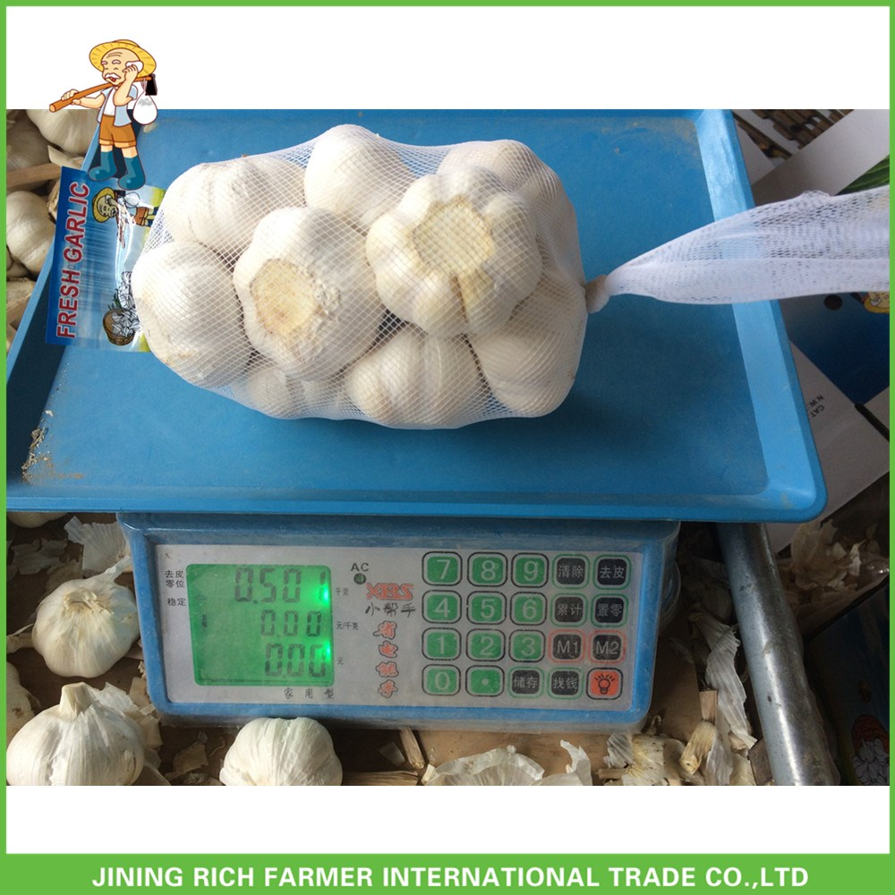 Fresh Normal White Garlic 5.0cm In 10kg Carton For Columbia Cheapest Price High Quality