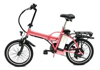 2016 New Design Chinese Electric Bike