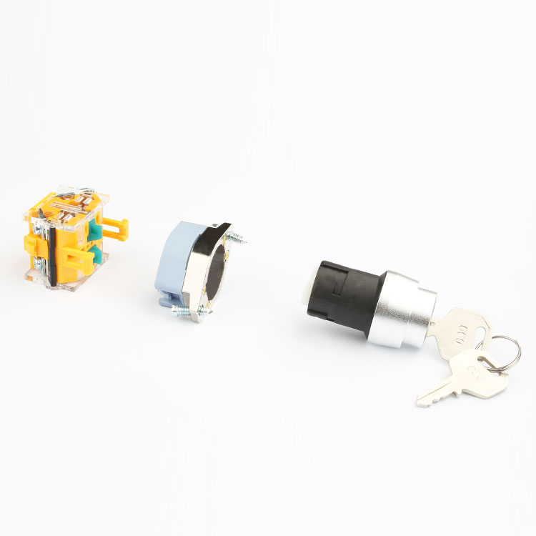 LA133 factory price hot sell 22mm 2 position switch with key