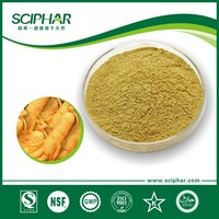 Manufacturer Supply Natural ginseng extract Extract in High Quality