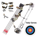 compound bow set with carbon arrows 70lbs hunting archery aluminum compound bow best price china wholesale low price