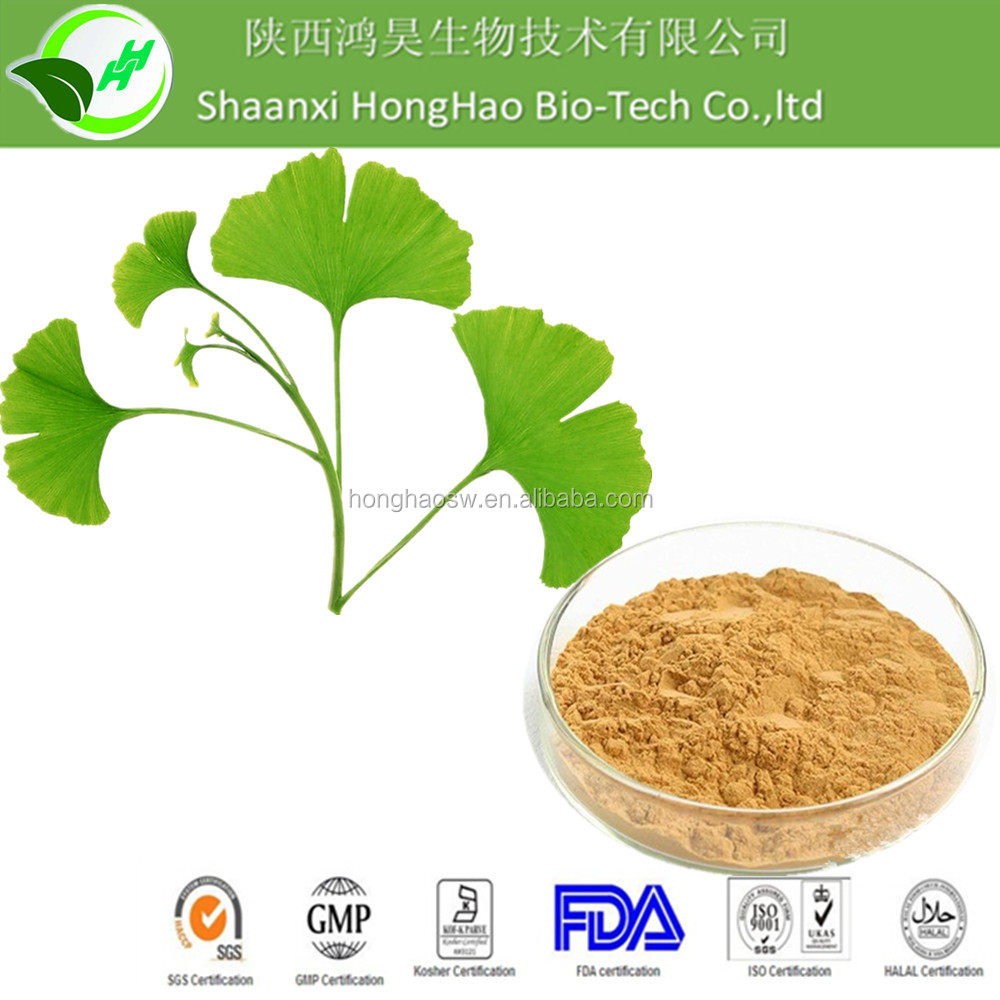 Ginkgo biloba plant extract Powder /100% natural Healthcare Supplement ginkgo biloba extract/ ginkgo vitamins