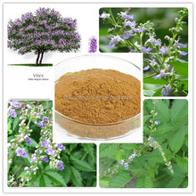 Factory Direct Supply with Best Price 100% Natural 5% Vitexin Vitex Agnus Castus Extract