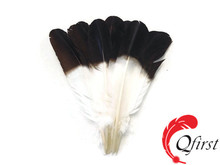 2017 wholesale cheap white tom turkey eagle rounds brown tipped feathers