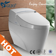 Intelligent One Piece Toilet with 2016 newest White Smart Bidet electronic toilet