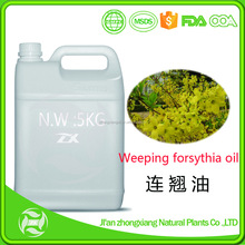 100% pure nature weeping forsythia oil for export