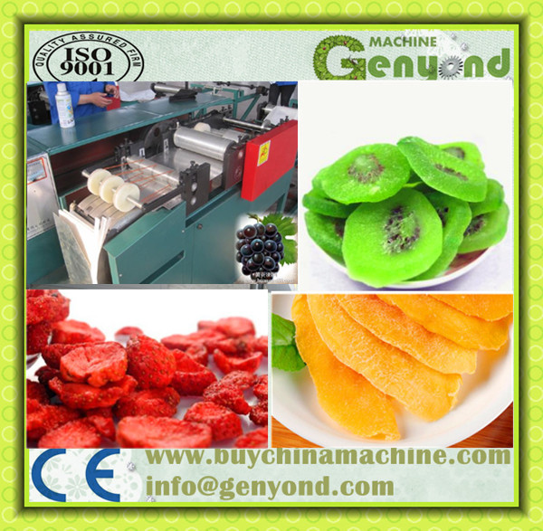 Persimmon chips Vacuum Frying Machine(VF-30) Made in Chin