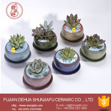 Desktop Decoration Mini Succulent Planter Pots With Tray