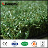 Best price golf putting green grass artificial turf carpet