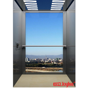 Small home villa lift elevator with high quality
