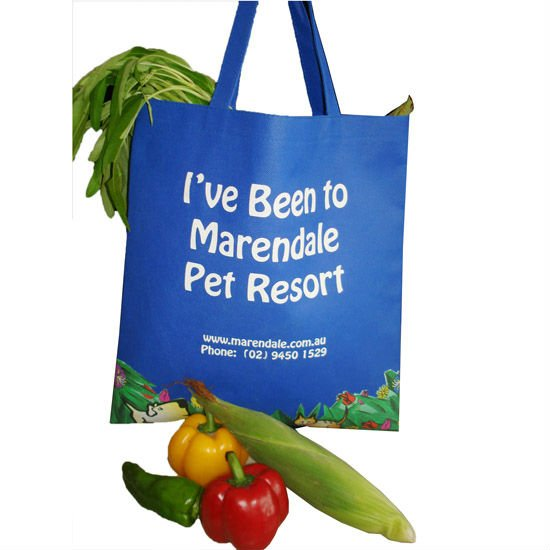 Non Woven green grocery tote shopping Bag Eco Friend