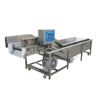 Stainless steel industrial fruit lettuce washing machine