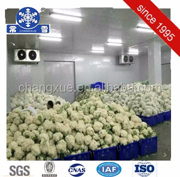 Air conditioner frozen cold room for meat and fish customized size