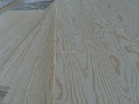 linyi doorn sizes pine plywood with CE