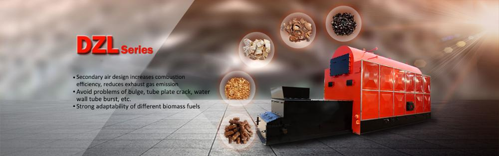 Fired coal biomass hot water heater industrial use boiler