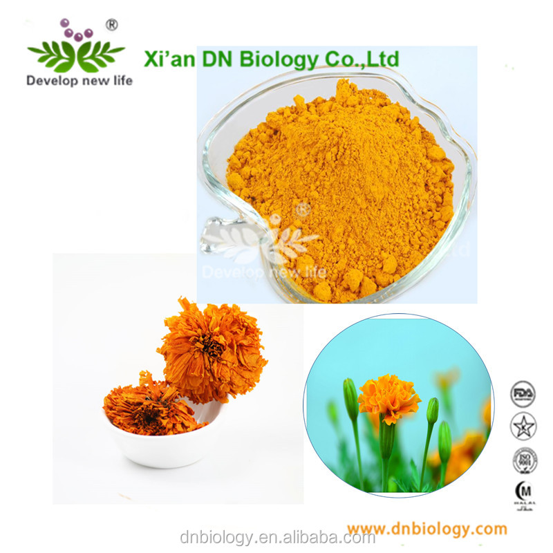 Food Color Plant Extract Marigold Flower Extract Marigold Lutein Powder