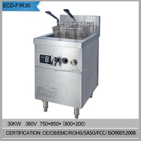 Free standing.2 tank electric induction deep fryer