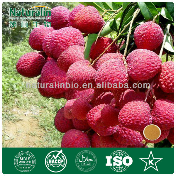 Factory supply 100% Pure Natural Lychee seed extract Litchi extract