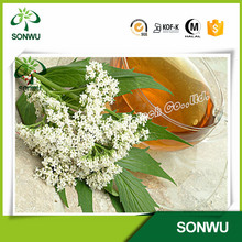 100% pure valerian oil for cosmetic grade and pharm grade