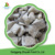 Price For Individual Quick Frozen Oyster Mushroom