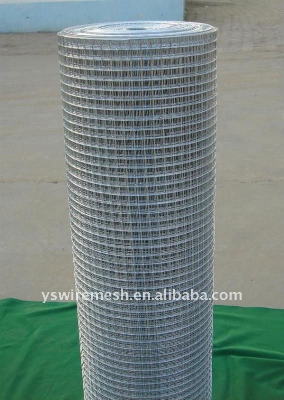G.I. welded wire mesh
