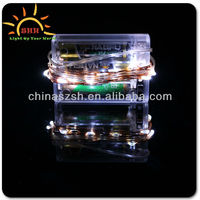 novel led festival copper wire string lamp,dicorate Halloween or Christmas, can make any style you like