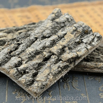 Traditional herb chinese dried Du zhong