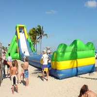 Giant inflatable jumbo water slide for sale, inflatable hippo slide for adults B4039