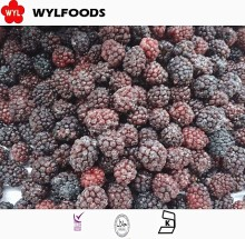 2016 china new season Frozen IQF Blackberry berries