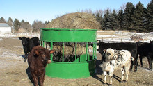 FP-010 Hay Hopper Round Bale Feeder for Sheep