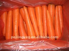 Chinese Fresh red Carrot (150g-200g)