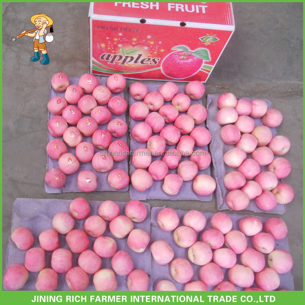 Hot Sale Chinese Apple Fruit Fresh Fuji Apple Fruit Competitive Prices