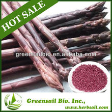 2014 Purple Asparagus seeds for growing