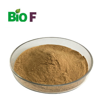 Factory Supply Alkaline Protease Enzyme For Food Grade In Bulk