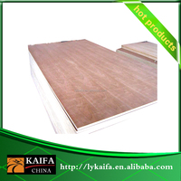 Poplar Core 1220 2440 9mm Plywood