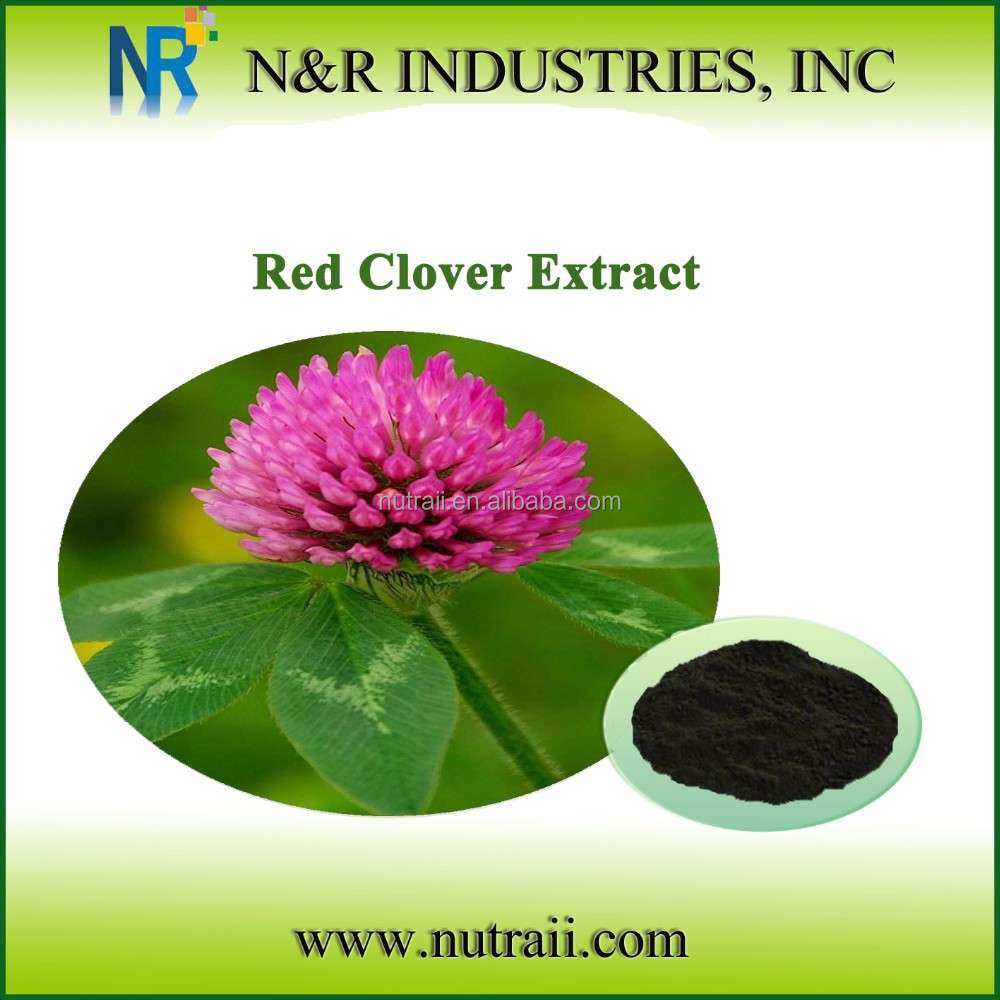 Reliable supplier red clover flower extract