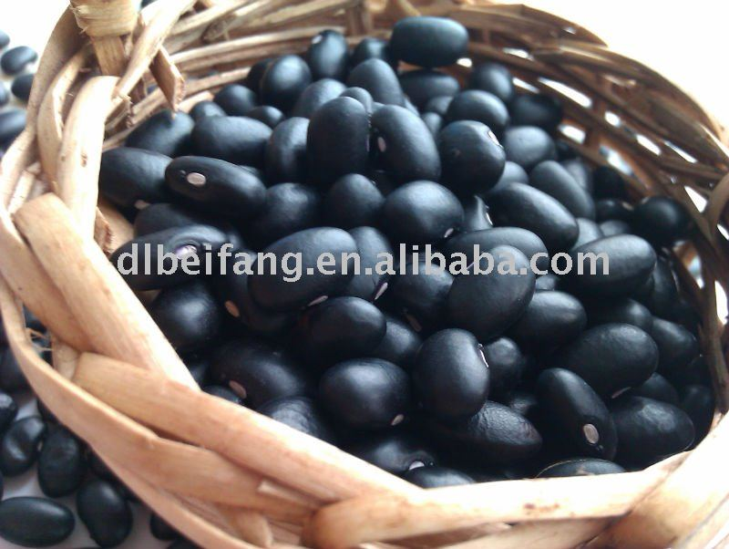 Black Kidney Beans ( 2010 crop,Heilongjiang Origin, Hps)